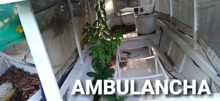 ambulanchas