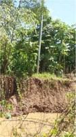 Luzinei Delgado, solicita a manutenção e substituição de portes de rede elétrica nas margens do rio madeira
