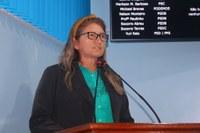 Socorro Torres solicita pintura padrão e reflexo adesivo nos cavaletes da Prefeitura